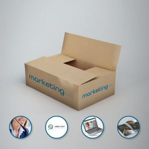Start-Up-Paket Basic